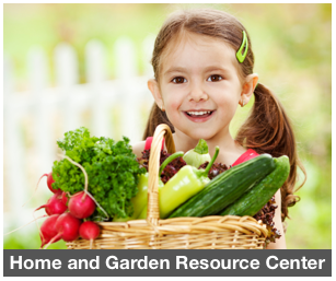 ResourceCenter_Home_GardenMain